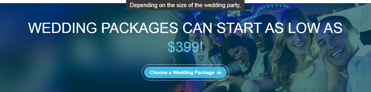 banner-WeddingPckgsStartAt-1