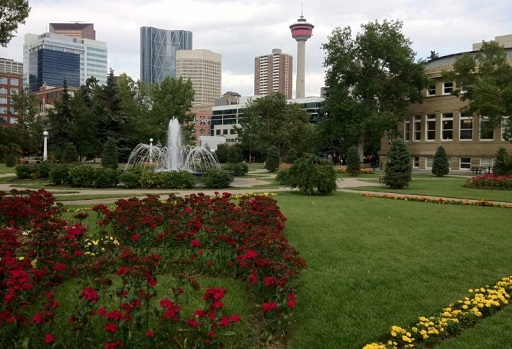 Memorial Park downtown Calgary with view of Calgary Tower