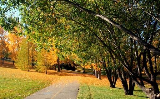 Confederation Park pathway in Autumn