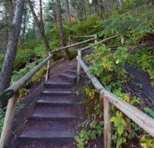 Stairway at Edworthy Park